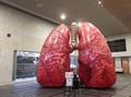 2016年度日本COPDサミット「肺の生活習慣病 -COPDは全身におよぶ病気です-」 実施記録 (写真)