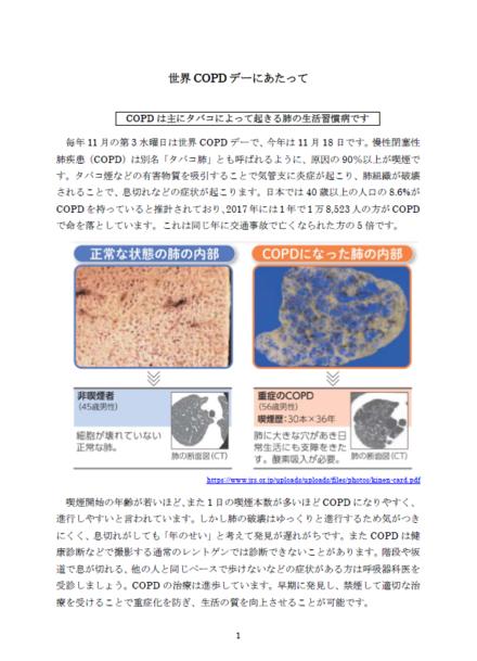 世界COPDデー2020:『COPD』の認知度向上を目指して~Raising Awareness of COPD~ 実施記録(写真)3